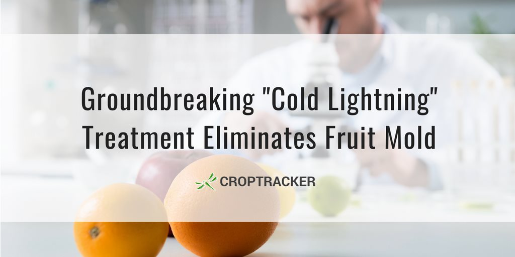 Groundbreaking Cold Lightning Treatment Eliminates Fruit Mold